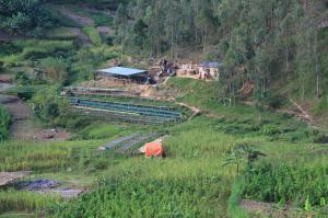 Cocatu Cooperative, Rulindo, Rwanda